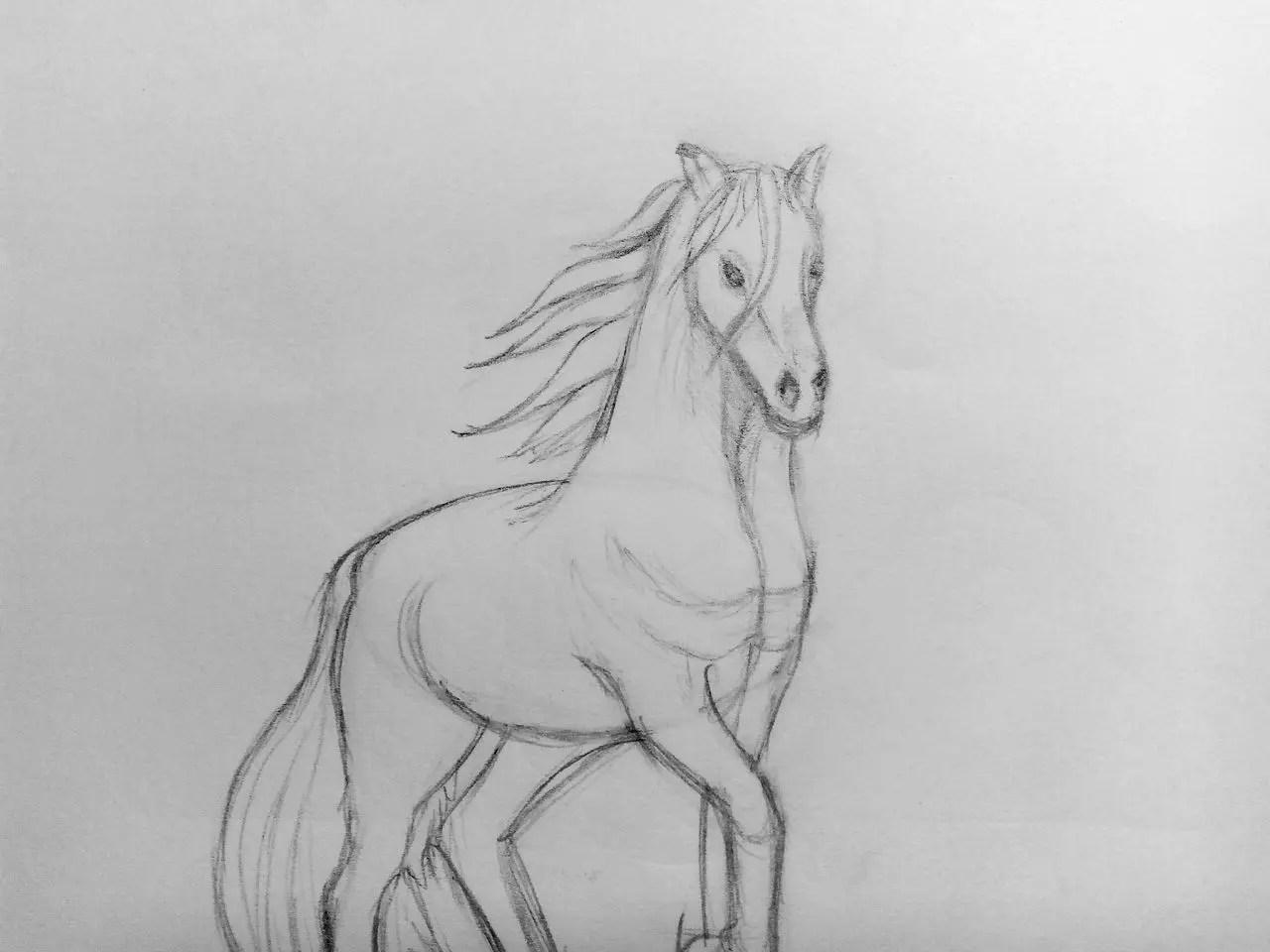 Как нарисовать лошадь карандашом? Поэтапный урок. Шаг 13. Портреты карандашом - Fenlin.ru