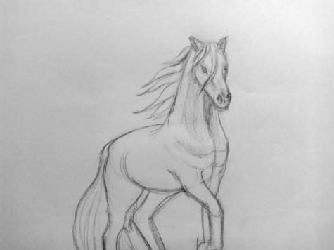 Как нарисовать лошадь карандашом? Поэтапный урок. Шаг 14. Портреты карандашом - Fenlin.ru