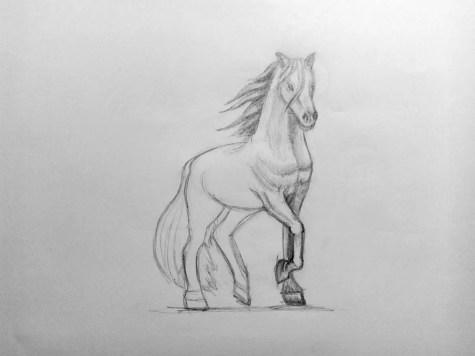Как нарисовать лошадь карандашом? Поэтапный урок. Шаг 15. Портреты карандашом - Fenlin.ru