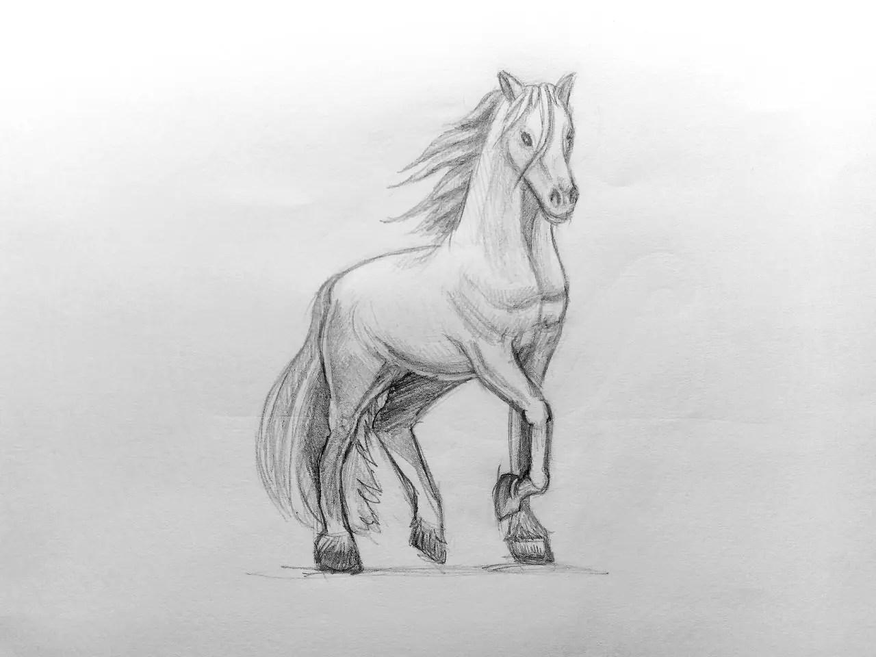 Как нарисовать лошадь карандашом? Поэтапный урок. Шаг 17. Портреты карандашом - Fenlin.ru