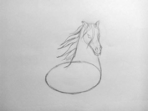 Как нарисовать лошадь карандашом? Поэтапный урок. Шаг 8. Портреты карандашом - Fenlin.ru