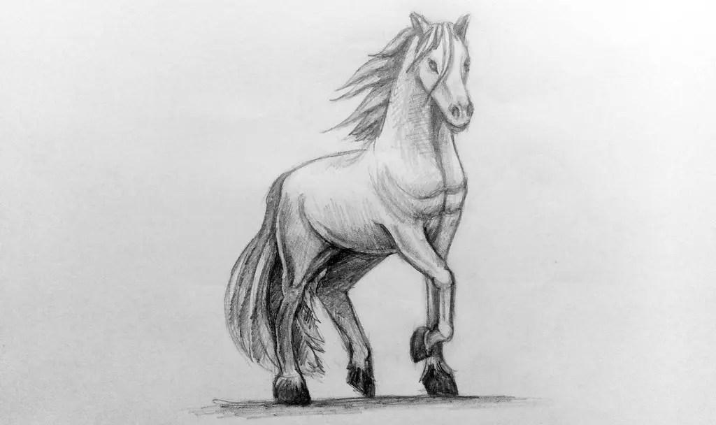 смотреть рисунки карандашом для начинающих животные вот