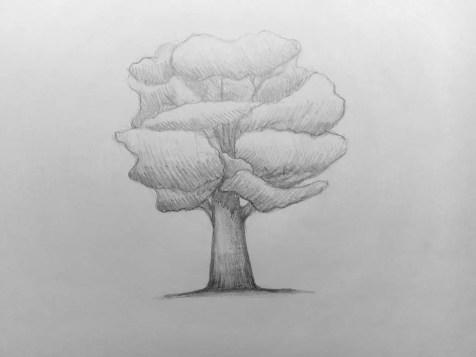 Как нарисовать дерево карандашом? Поэтапный урок. Шаг 10. Портреты карандашом - Fenlin.ru