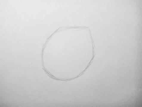 Как нарисовать цветок карандашом? Поэтапный урок. Шаг 1. Портреты карандашом - Fenlin.ru