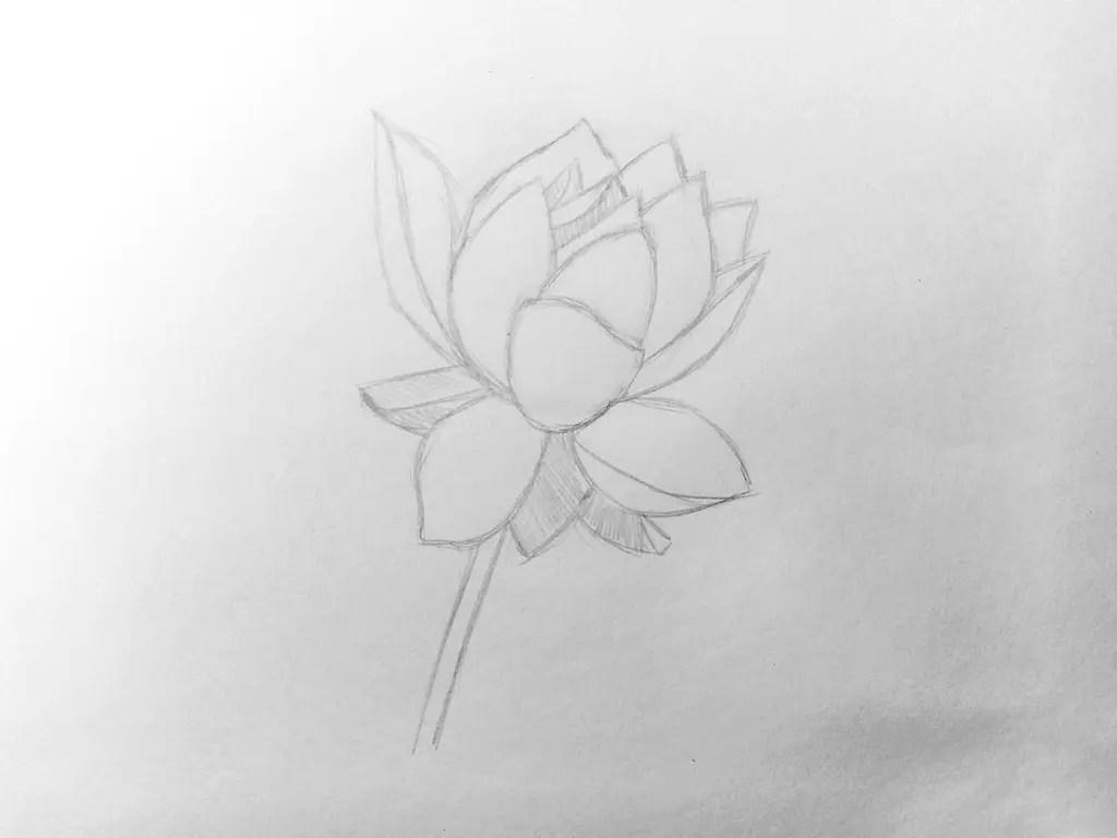 Как нарисовать цветок карандашом? Поэтапный урок. Шаг 8. Портреты карандашом - Fenlin.ru