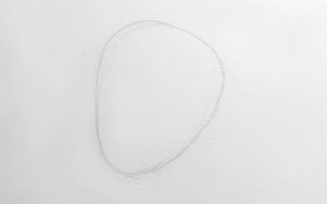 Как нарисовать кобру карандашом? Шаг 1. Портреты карандашом - Fenlin.ru