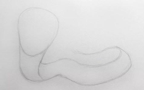 Как нарисовать кобру карандашом? Шаг 3. Портреты карандашом - Fenlin.ru