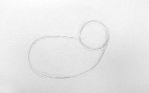 Как нарисовать лису карандашом для детей. Шаг 1. Портреты карандашом - Fenlin.ru