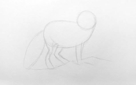 Как нарисовать лису карандашом для детей. Шаг 2. Портреты карандашом - Fenlin.ru