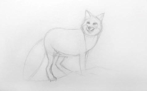Как нарисовать лису карандашом для детей. Шаг 5. Портреты карандашом - Fenlin.ru