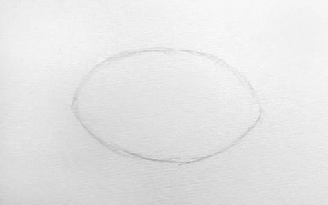 Как нарисовать слона карандашом? Шаг 1. Портреты карандашом - Fenlin.ru
