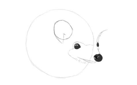 Как нарисовать ежика карандашом? Шаг 5. Портреты карандашом - Fenlin.ru
