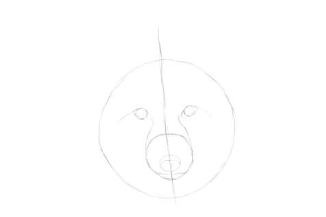 Как нарисовать лису на графическом планшете? Шаг 4. Портреты карандашом - Fenlin.ru