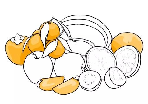 Как нарисовать фрукты? Шаг 11. Портреты карандашом - Fenlin.ru