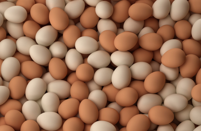 a very large pile of eggs. so big the camera can't cover it. this is a lot of eggs. (brown and white)