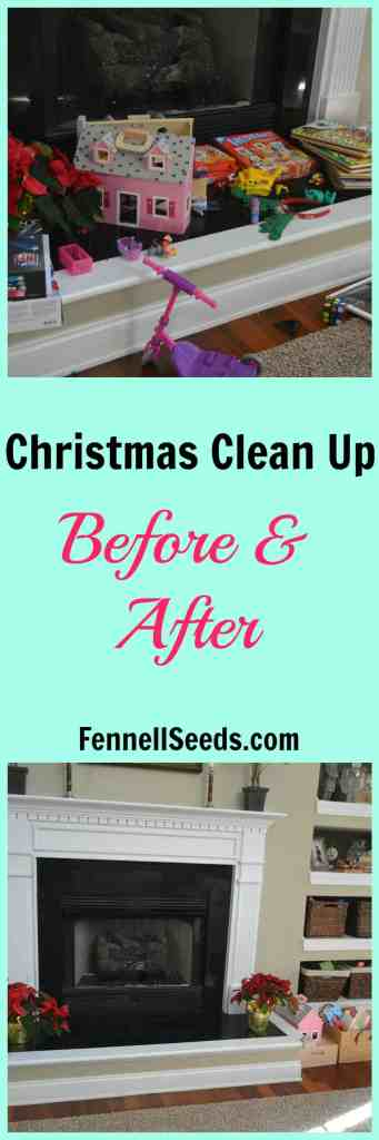 Christmas Clean Up - Before and After