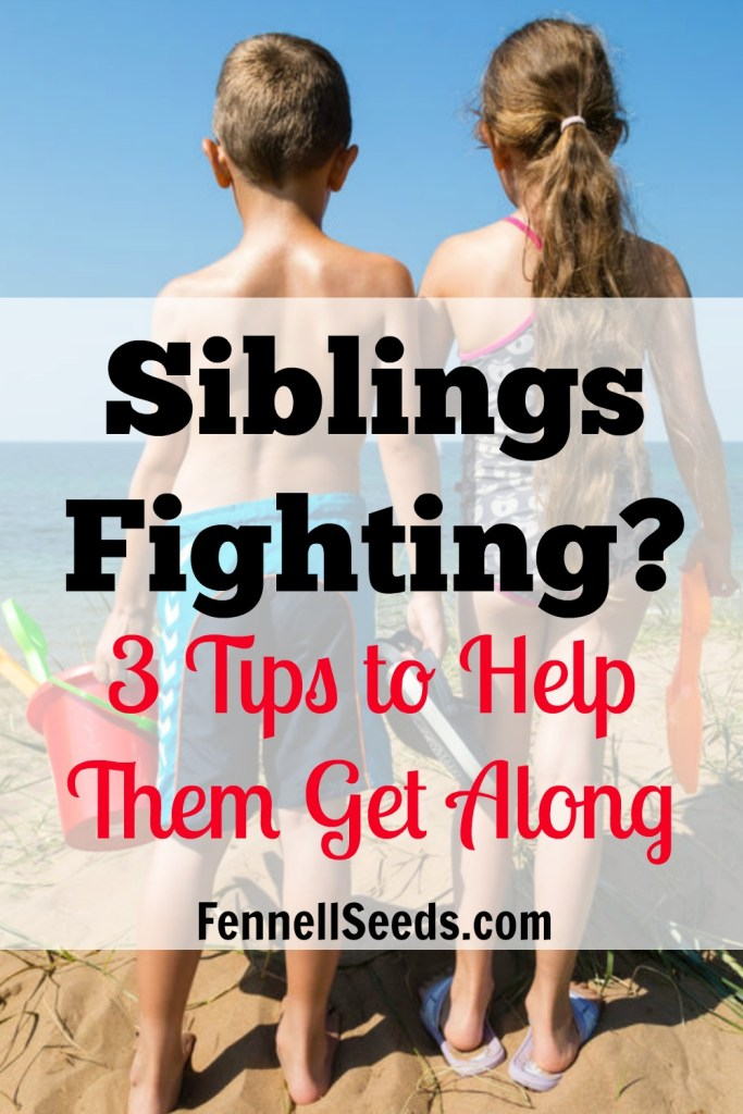 Sibling Relationship | Brother Sister Fight | Fighting? 3 Tips to Help Them Get Along. My favorite things I learned from reading Siblings Without Rivalry. They really work and number 2 is just plain good parenting advice even if your kids don't argue.