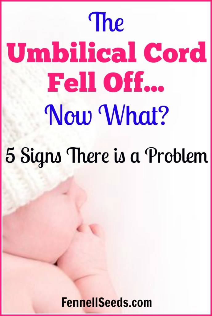 Umbilical cord   umbilical cord fell off   umbilical cord