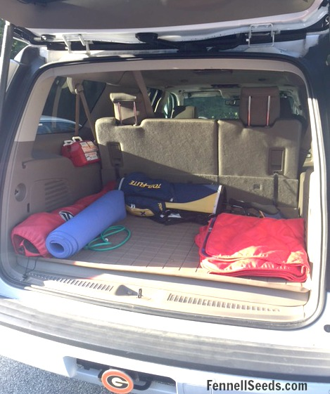 Minivan vs suv | suv vs minivan | Should I buy a minivan | minivan versus suv | suv versus minivan