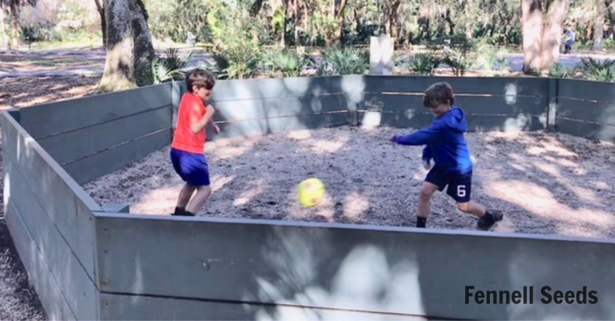 Gaga Ball: Quick start guide on how to play gaga ball. This game is now in a lot of parks and schools.