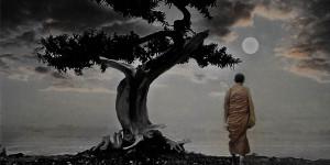 zen budizam story