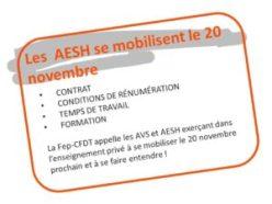 AVS et AESH : Appel à mobilisation