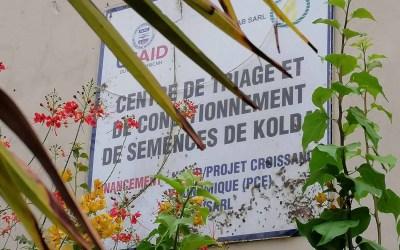 Photos de la visite d'échanges au niveau du Centre de Conditionnement de Semences (CTS) de SEDAB à Kolda