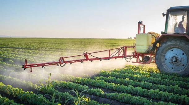 Denuncian en la ONU violación a los derechos humanos por el uso de agrotóxicos en la Argentina