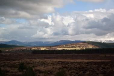 Highlands (39)