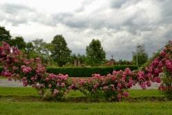 Parc Herastrau (23)
