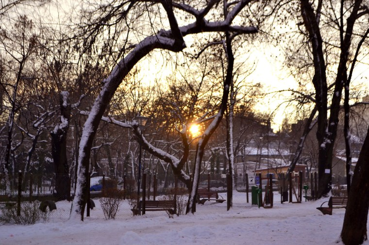 WInter sunset in Grădina Icoanei