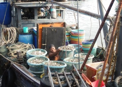Interactive Inventory of Capacity Building Initiatives to Combat IUU Fishing