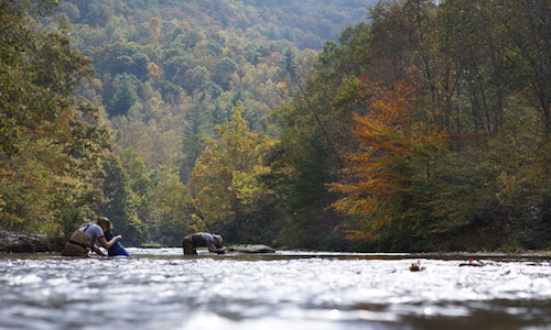Imperiled Aquatic Species Conservation Strategy for the Upper Tennessee River Basin