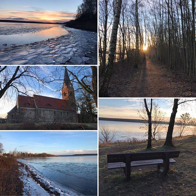 Winter ️ in und am Muldestausee ️ #muldestausee #pouch#ferienhaushalbritter #ferienhauspouch #ferienhauskrina #duebenerheide #winter