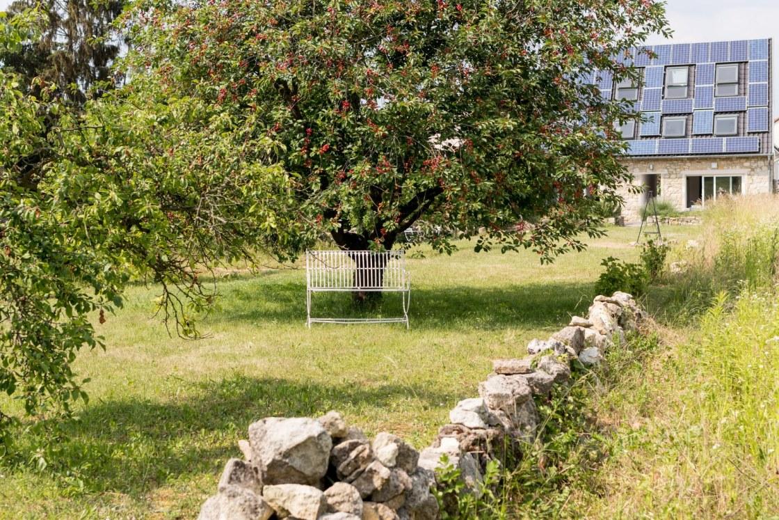 Gartenbank unter Kirschbaum im Garten der Mainzer Ferienhäuser