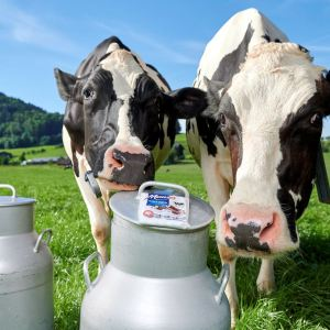 Munz Extra Milch, Maestrani © Thomas Hary