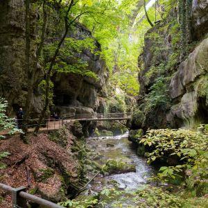 Der mystisch anmutende Weg durch die Taubenlochschlucht ©Jura & Drei-Seen-Land