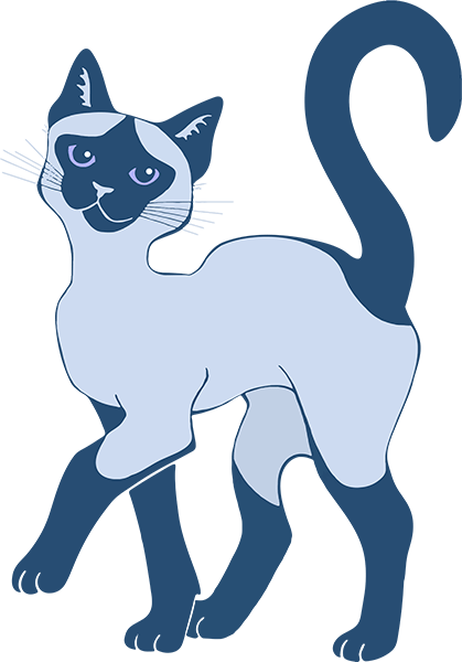 Strutting Siamese Cat - blue point