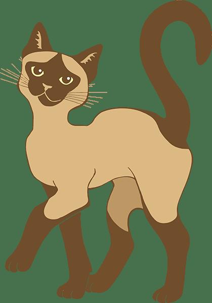 Strutting Siamese Cat - brown point