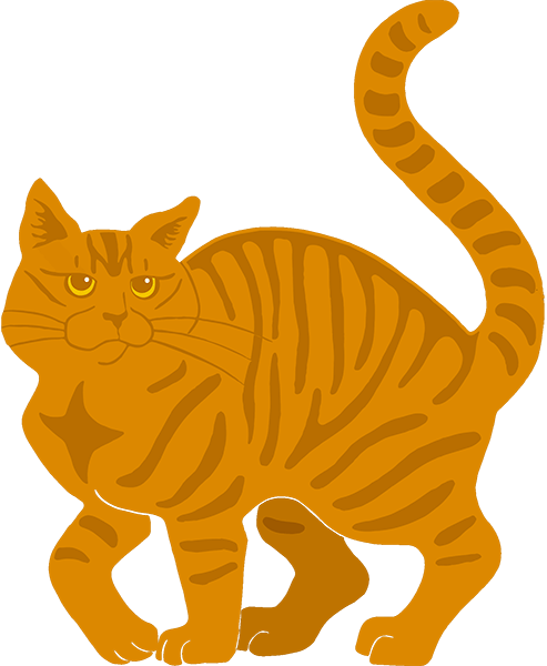 Orange Tabby Cat - tiger stripe