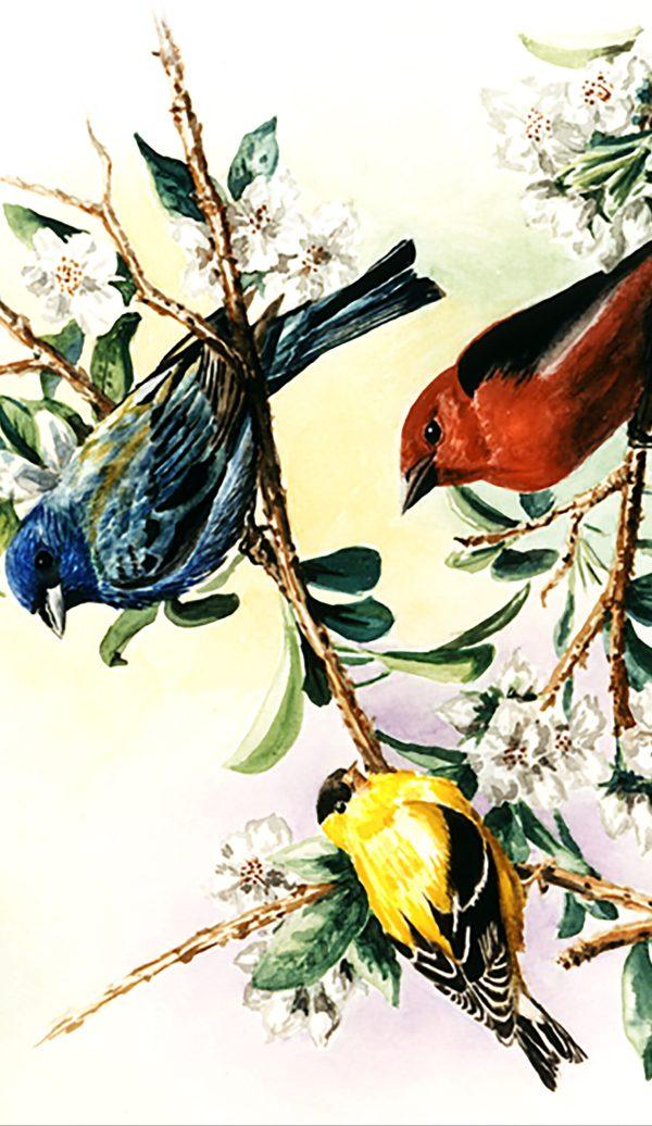Songbirds Phone Case image