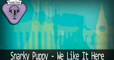 fermata tracks 43 snarky puppy we like it here mp3 image - Fermata Tracks #43 - Snarky Puppy - We Like It Here