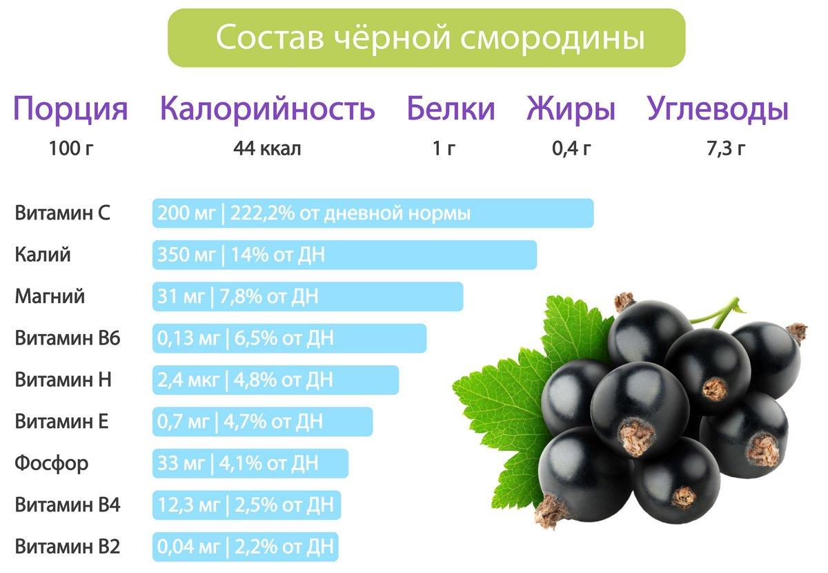 pierderea neagră de grăsime de coacăze)