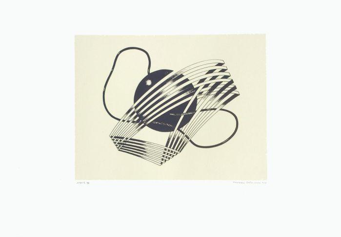 COSMOS VI, 2013, serigrafia, papel, 41 x 31 cms.