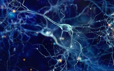 Recordando gracias a las Redes Neuronales