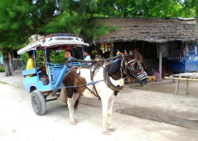 Kurztrip auf die Gili Islands: Kein Motorlärm, nur Kutschen auf Gili Trawangan