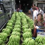 Bangkok vorm Rückflug: auf dem Großmarkt Pak Klong Talad