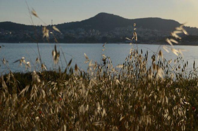Spaziergang am Varkiza Strand bei Athen