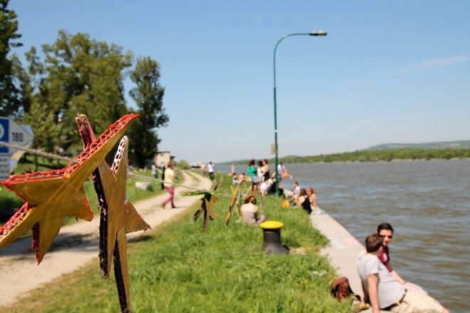 Fahrradtour in Wien entlang der Donau - Insidertipp