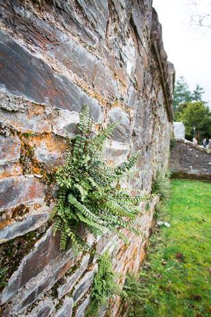 Mauer in Luss, Schottland
